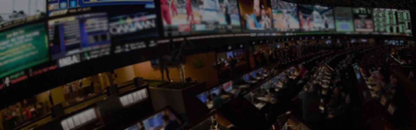 custom sports betting software development