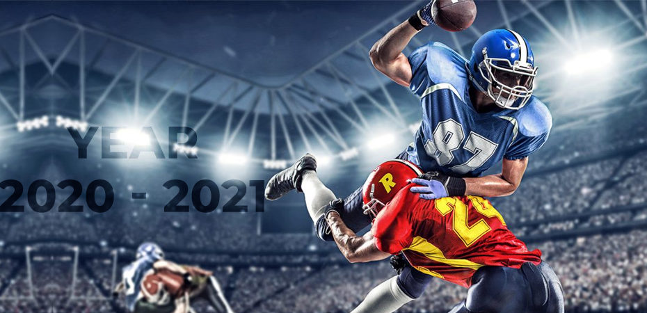 Scope of Fantasy Sports Industry in the Year 2020-2021