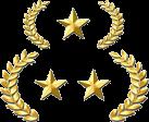 Gold - Supreme - Master - Silver - Counter-Strike Tournament Management Software