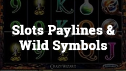 Slots Paylines and Wild Symbols Online Casino Games