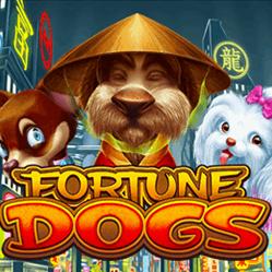 Fortune Dogs Habanero Casino Games