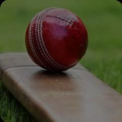 Cricket Betting Software