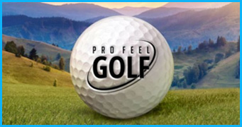 Pro Feel Golf Game Development