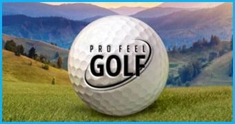Pro Feel Golf Game Development