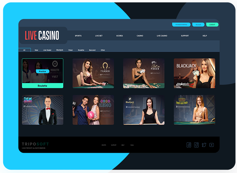 Online Casino Software Services & Solutions