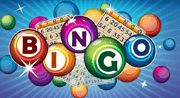Bingo Online Lottery Game