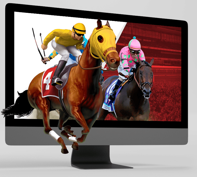 Horse Racing Software